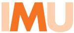 Mini IMU