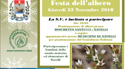 Festa dell'albero – 22 novembre '18